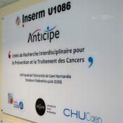 Cancer du sein : «l'accès au dépistage pour toutes est une question d'équité »